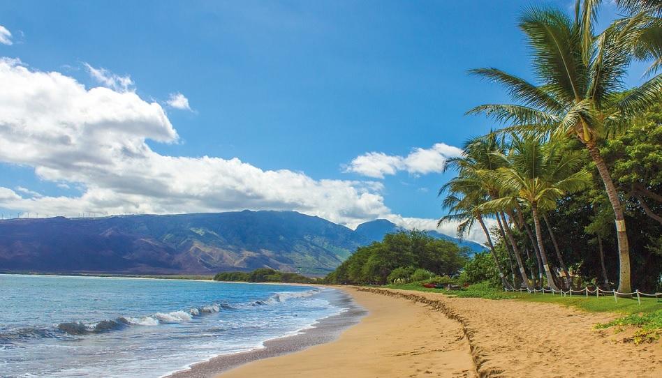 Väter aus Hawaii